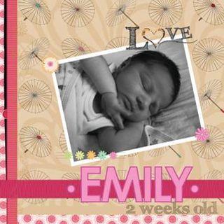 Emily layout